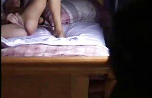 મારી બહેન પલંગ પર છુપાવેલા કેમેરા દ્વારા પકડાયેલી બિલાડી પર સળીયાથી.